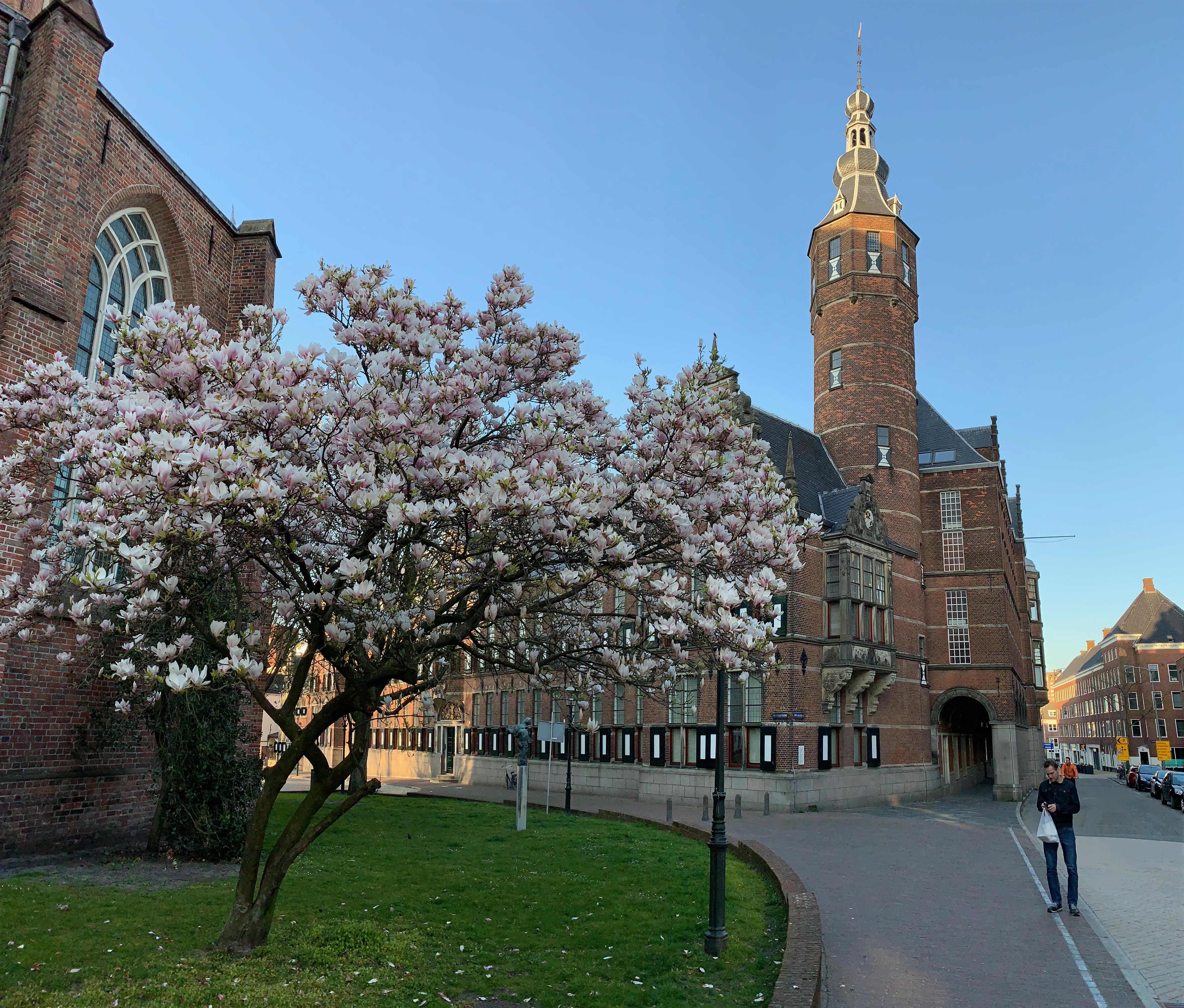 ACT opleidingen van StressWise vind je in Hilversum en Groningen (Noord en Oost Nederland)